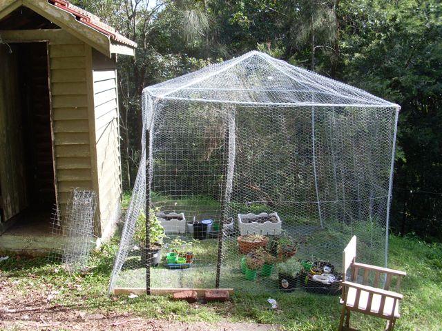 Greenhouse final
