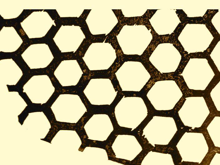 Honeycomb grab for blog